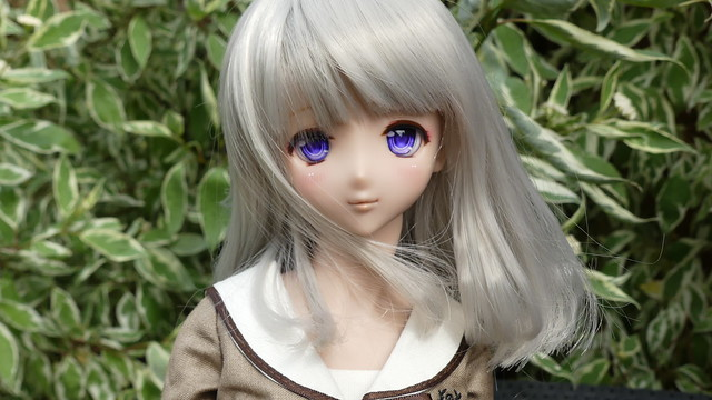 [Volks Dollfie dream] la neige p11 42367074324_c7c33b32d3_z