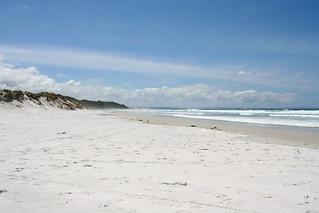 Ninety Mile Beach - New Zealand 2008
