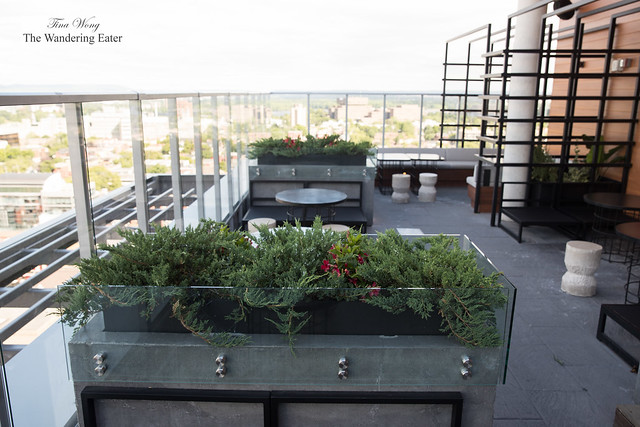 View on the rooftop lounge