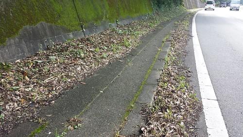 仁保の坂では草刈の後、側溝が泥だけれです