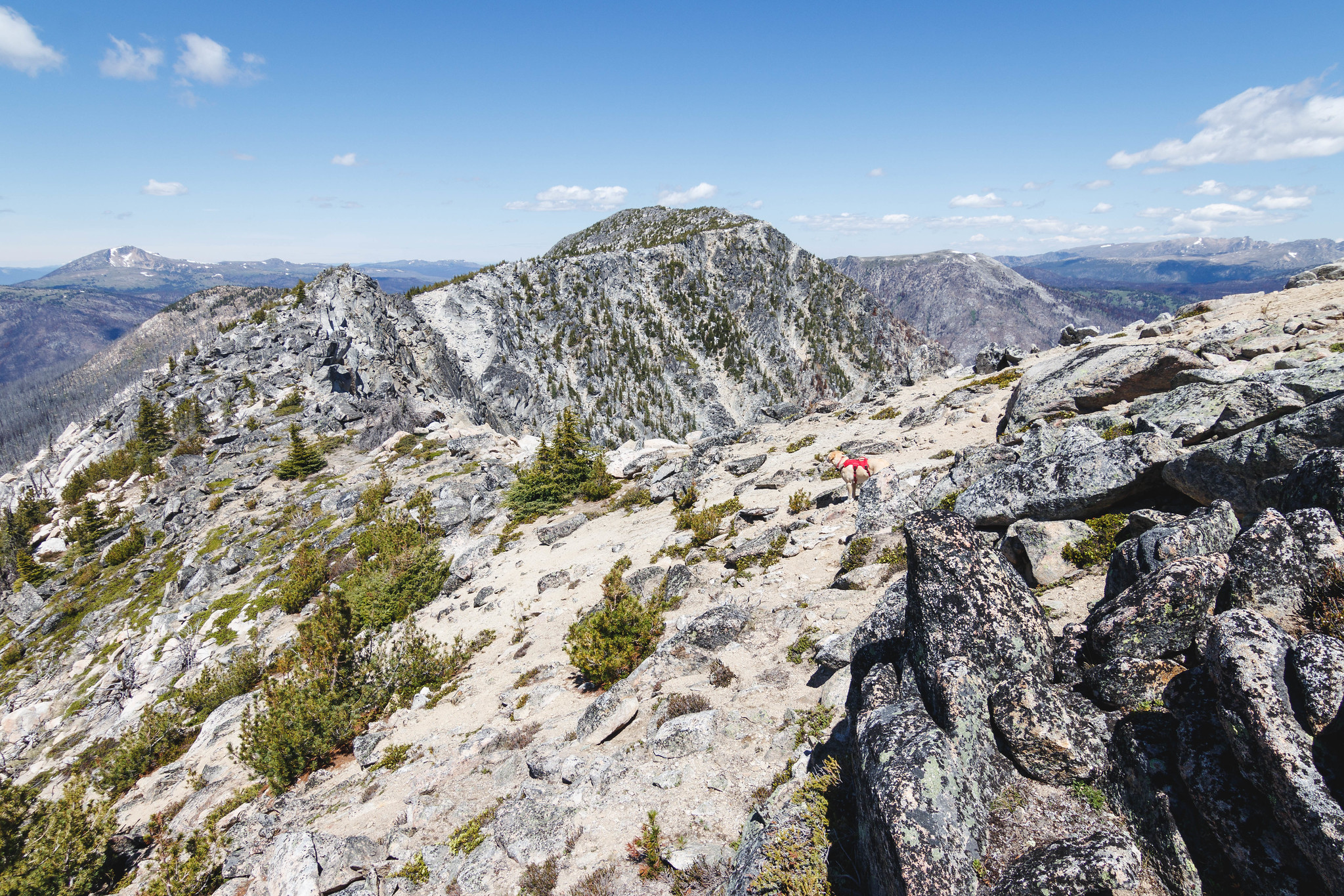 Freds Mountain within reach