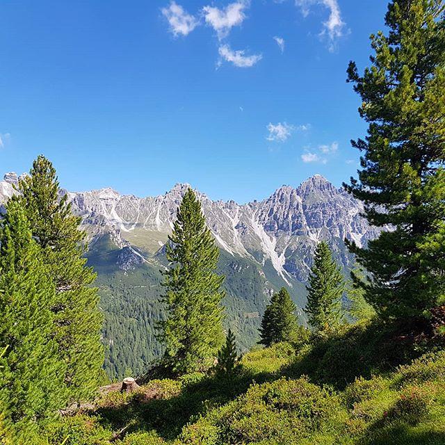 Photo:Oben ists gut #baum #tree #trees #treehugger #wald #forest #forestry #forestgreen #austria #tirol #schlick2000 #2018 #alpen #alps #stubaital #mountains #berge #hikingadventures #wanderlust #wandern #vielzukurz #hiking #tirol #tyrolia #stubaital By Stefan_Moser