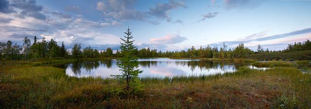 Panorama of northern lake