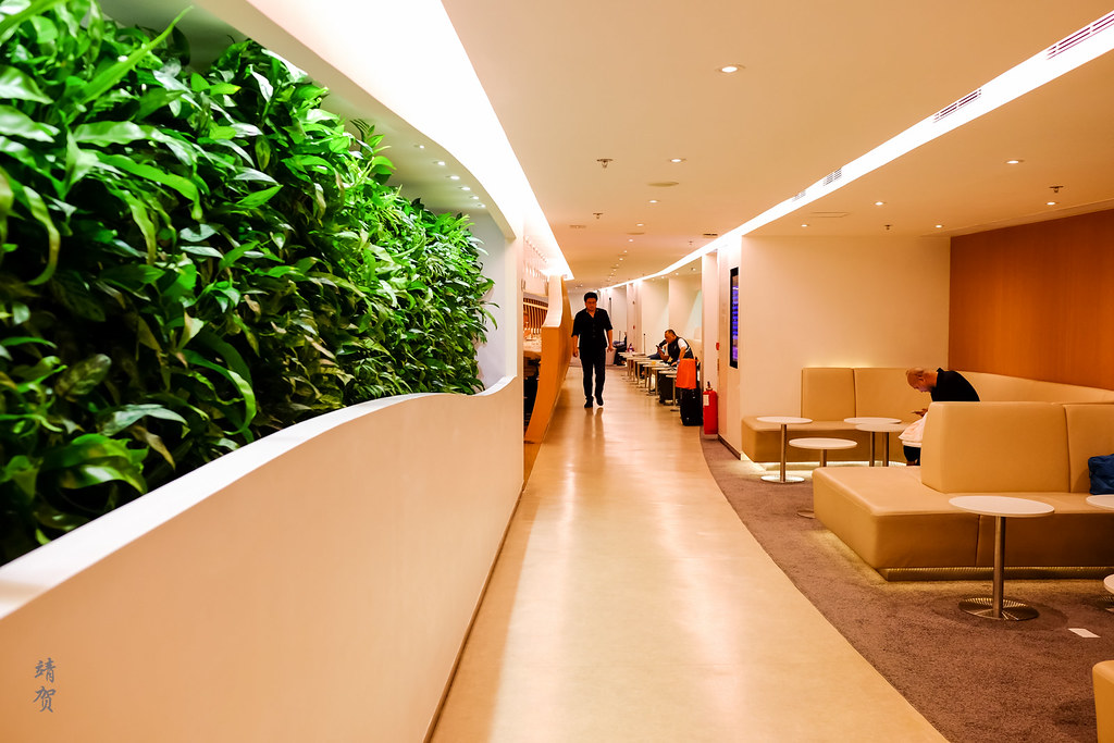 Green wall by the entrance