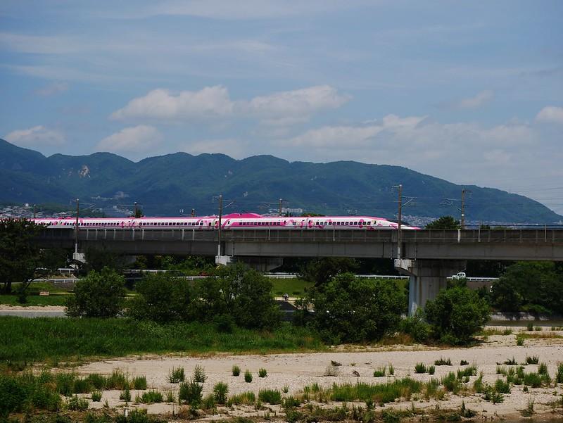 P1230961(1)