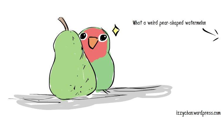 what a weird pair shaped watermelon