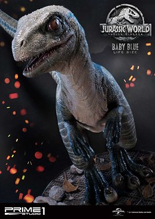 Life Size Baby Blue Statue from Prime 1 Studio - Jurassic World: Fallen Kingdom!
