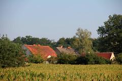 Bąków village