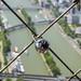 Eiffel Lock by Tyler Merbler Photo