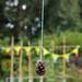 Scotland's Gardens Craigintinney Telferton July 2018 -113