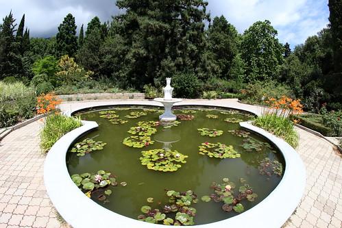 Nikita, Botanical Garden, 2018.06.24 (01)