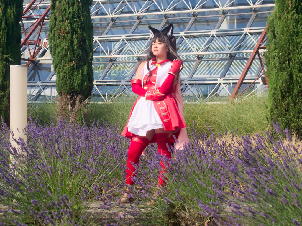 related image - Japan Expo 2018 - P1255919