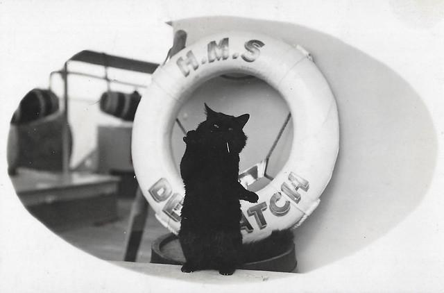 HMS Despatch