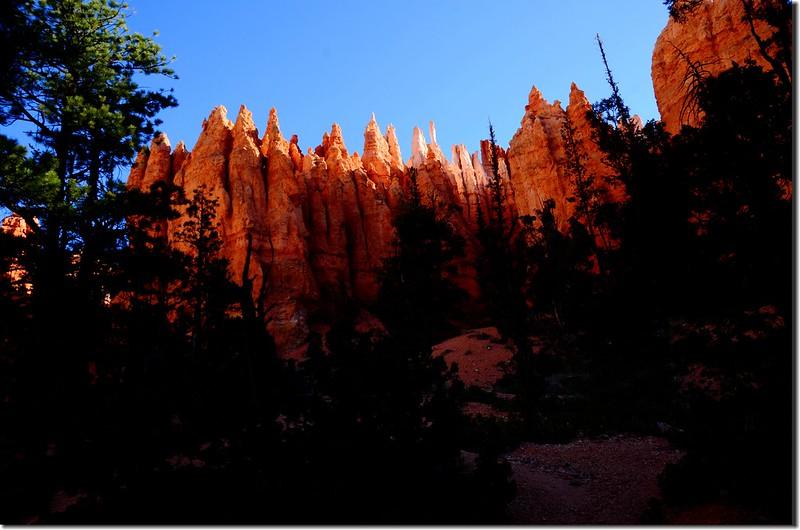 Queens Navajo Combination Loop,Bryce Canyon (14)