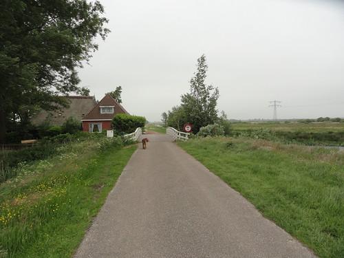 2016-0451