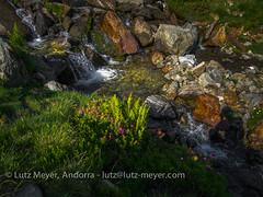 Andorra nature: Ordino, Vall nord, Andorra