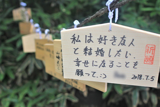 shibuyahikawa005