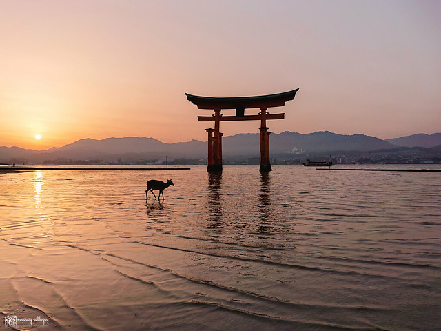 旅行若是一幅掌中的風景 | Sony Xperia XZ2 | 57