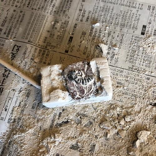 100円ショップの化石を掘るおもちゃ