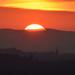 Sunset Edin castle (7)