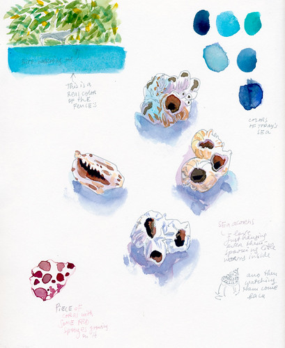 Sketchbook #113: Trip to Bonaire - Sketching above water9