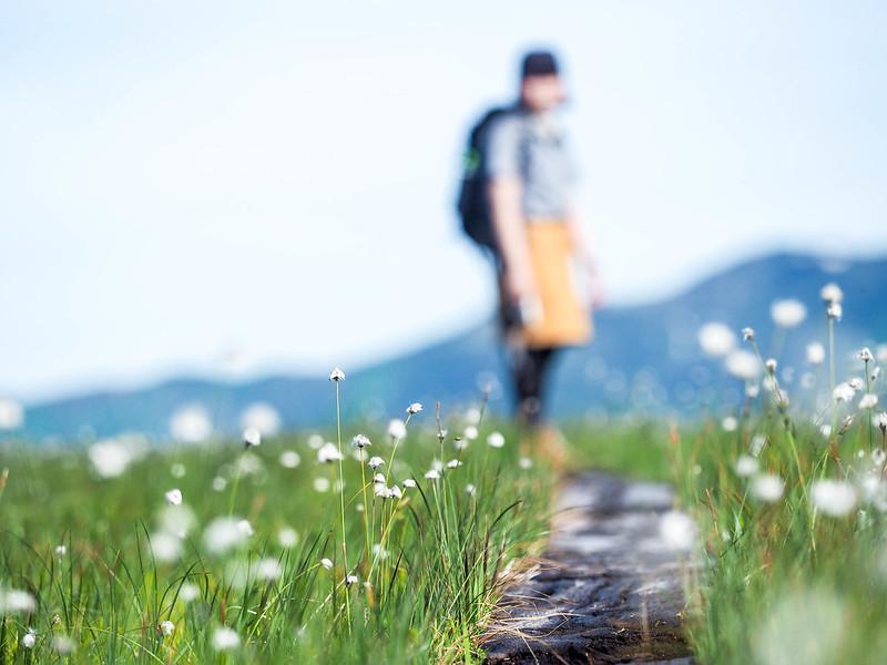 20141231_田代山~帝釈山_0078.jpg