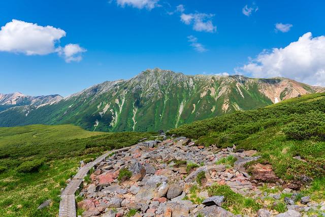 木道の山道と水晶岳