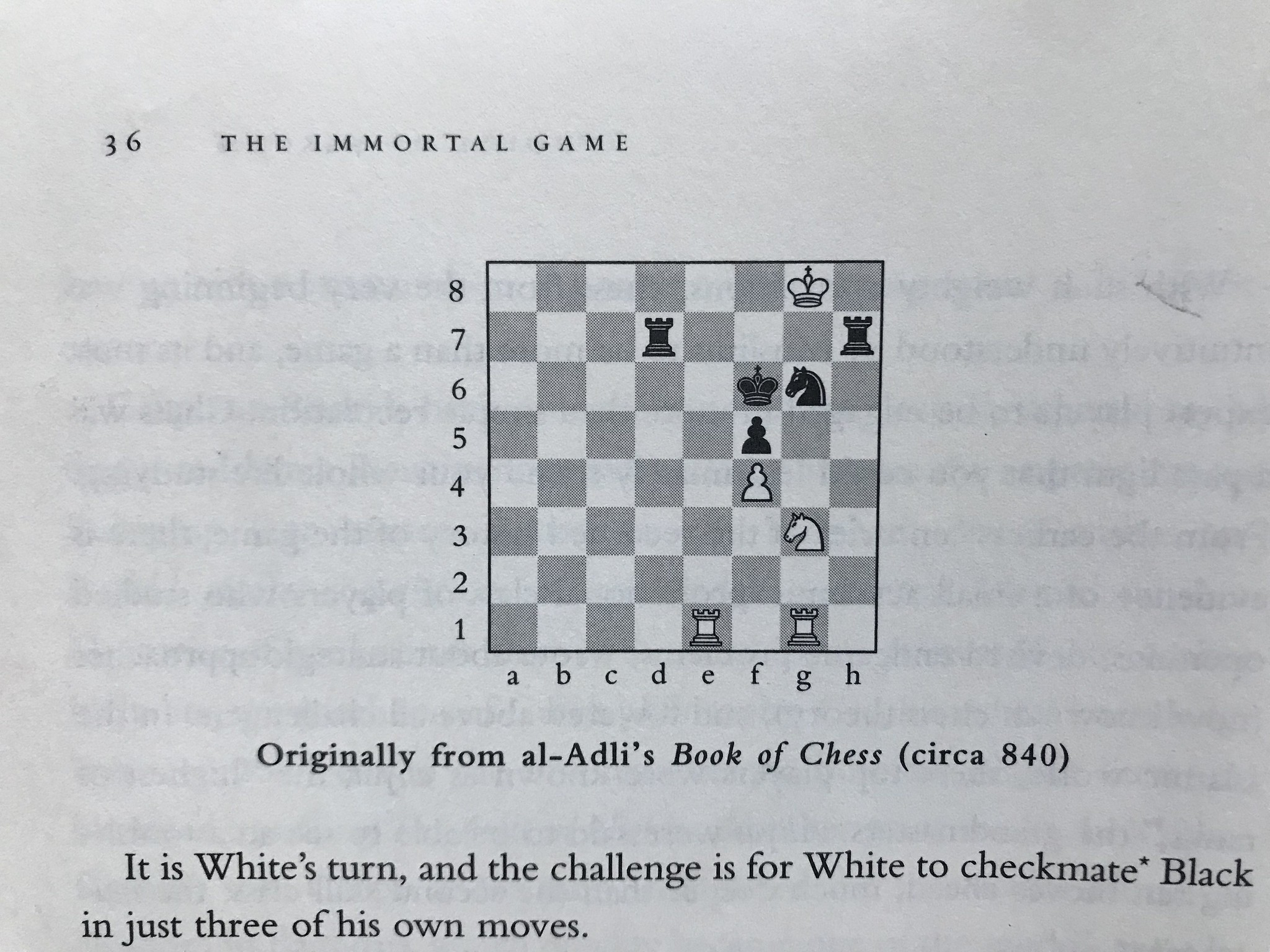 "A screenshot from ""The Immortal Game"" by David Shenk"