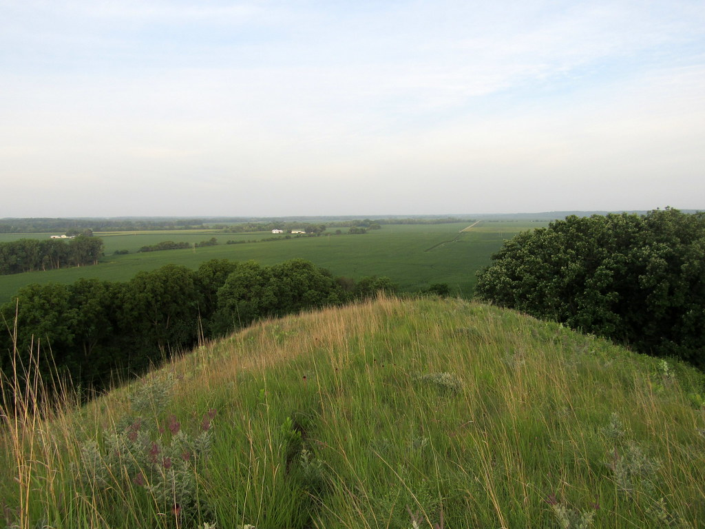 Revis Hill Prairie overlook
