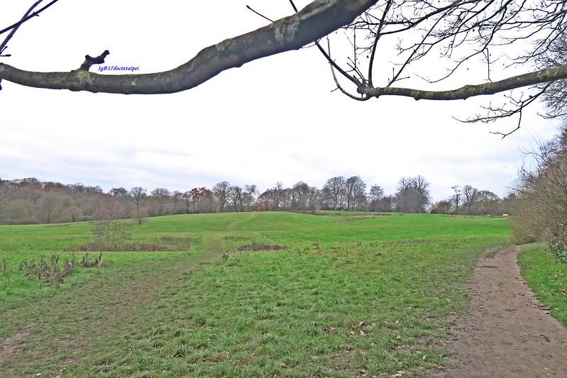 Kenwood-House-Hampstead-Heath-travel-london-BLOG-17docintaipei (8)
