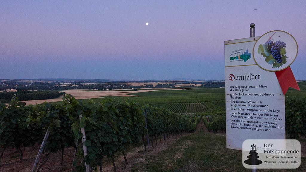 Mond über den Weinbergen des Selztals