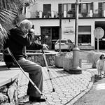 Le chien et son maître, ou l'inverse