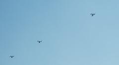 V-22 Ospreys over UK