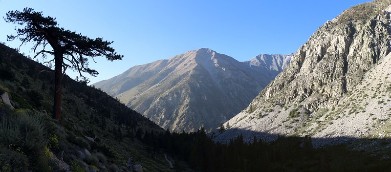 Looking back down the valley - the South Fork of Big Pine Creek is up that canyon to the right