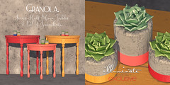 Granola. Fern's Half Moon Tables and DIY Succulents.