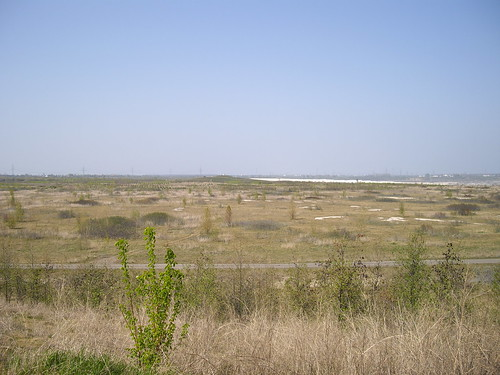 2010-04-25_15.36_58