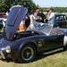 Ormesby Hall Classic Car Show (1)