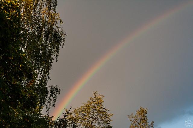 Rainbow / @ Dresden / 2018-07-25