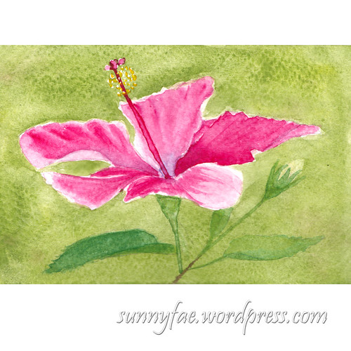 hibiscus flower watercolour
