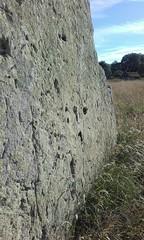 Smurf in Stone