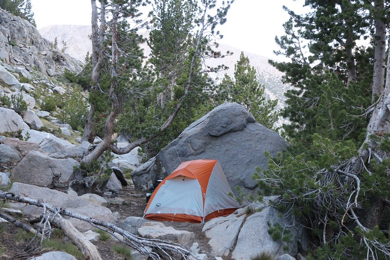 My tent and campsite up in the Limber Pines at Sam Mack Meadow