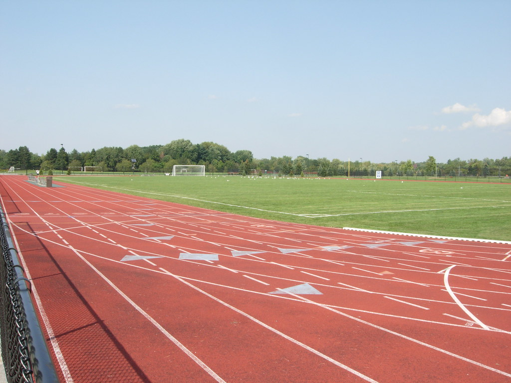 Track, field, and seagulls