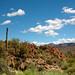 desert countryside