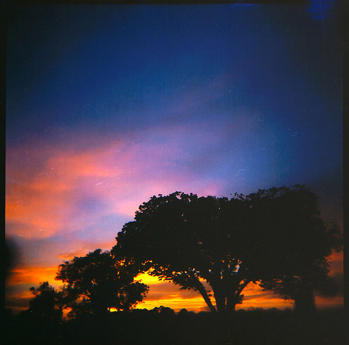 sunset 120 film silhouette mediumformat square geotagged holga texas explore interestingness11 fujisuperia100 goldenphotographer