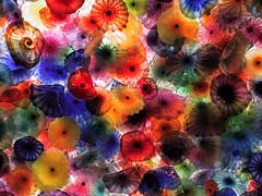 coral(0.0), leaf(0.0), plant(0.0), psychedelic art(0.0), flora(0.0), close-up(0.0), toy(0.0), autumn(0.0), fractal art(1.0), flower(1.0), macro photography(1.0), petal(1.0),