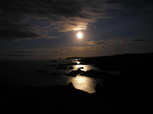 Moonlight on Trinity Bay