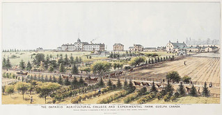 The Ontario Agricultural College and Experimental Farm, Guelph, Canada, 1889 / Collège d'agriculture de l'Ontario et ferme expérimentale, Guelph (Canada), 1889