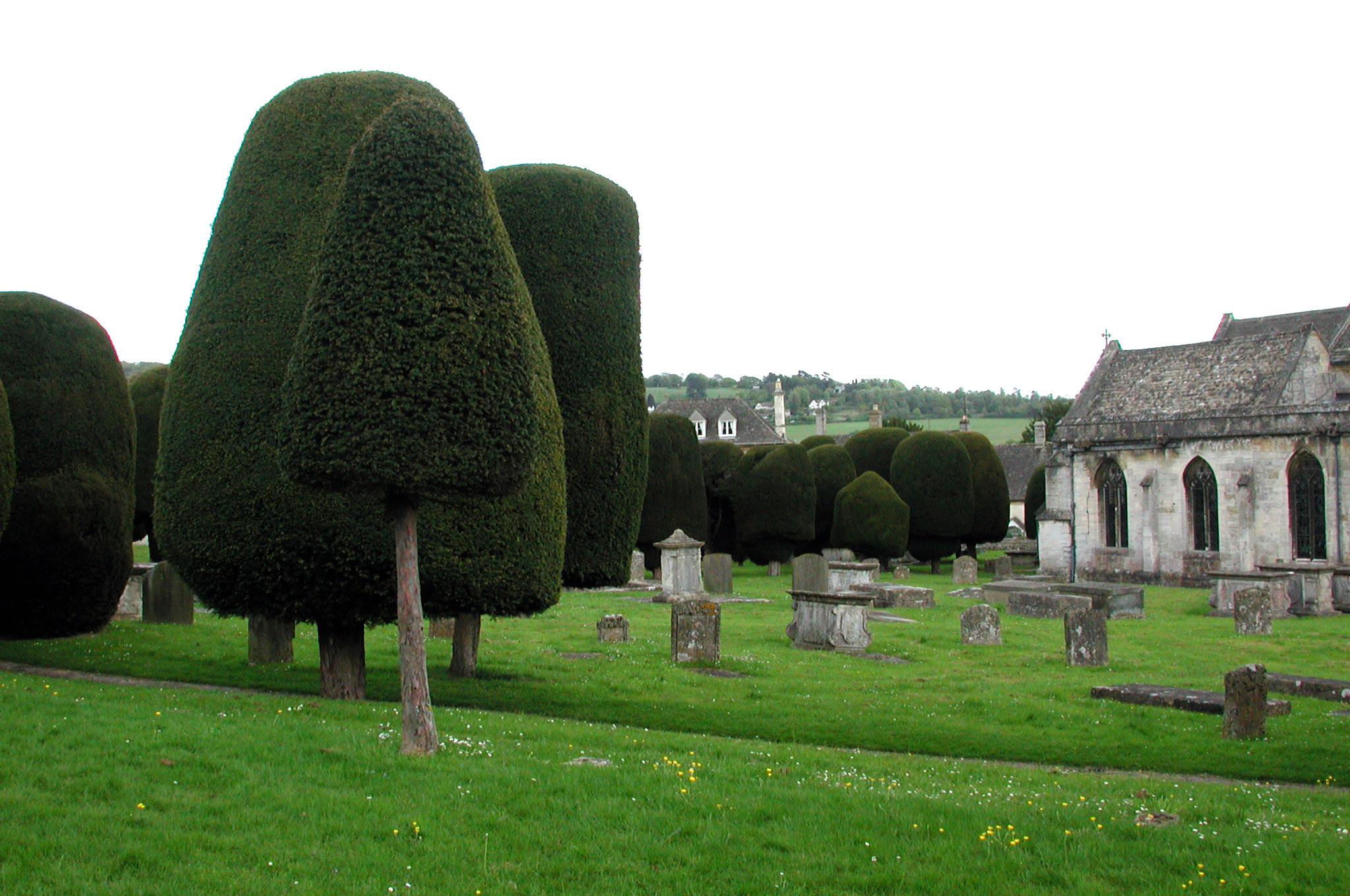 The St Mary's Parish churchyard in Painswick, Gloucestershire, is notable for its ancient and numerous yew trees. Photo taken on May 8, 2005.