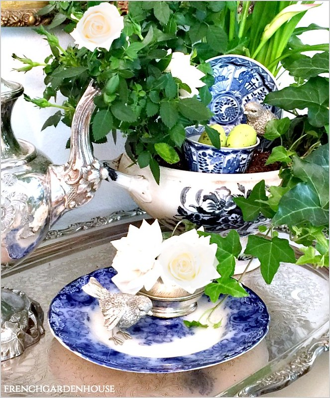 Dish-Garden-in-French-Tureen-FrenchGardenHouse