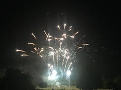 Les feux d'artifice pour la fête nationale illuminent le parc des Maillettes à Moissy